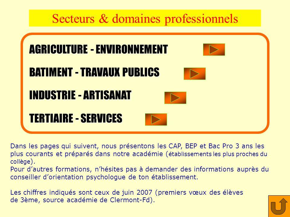 Secteurs & domaines professionnels