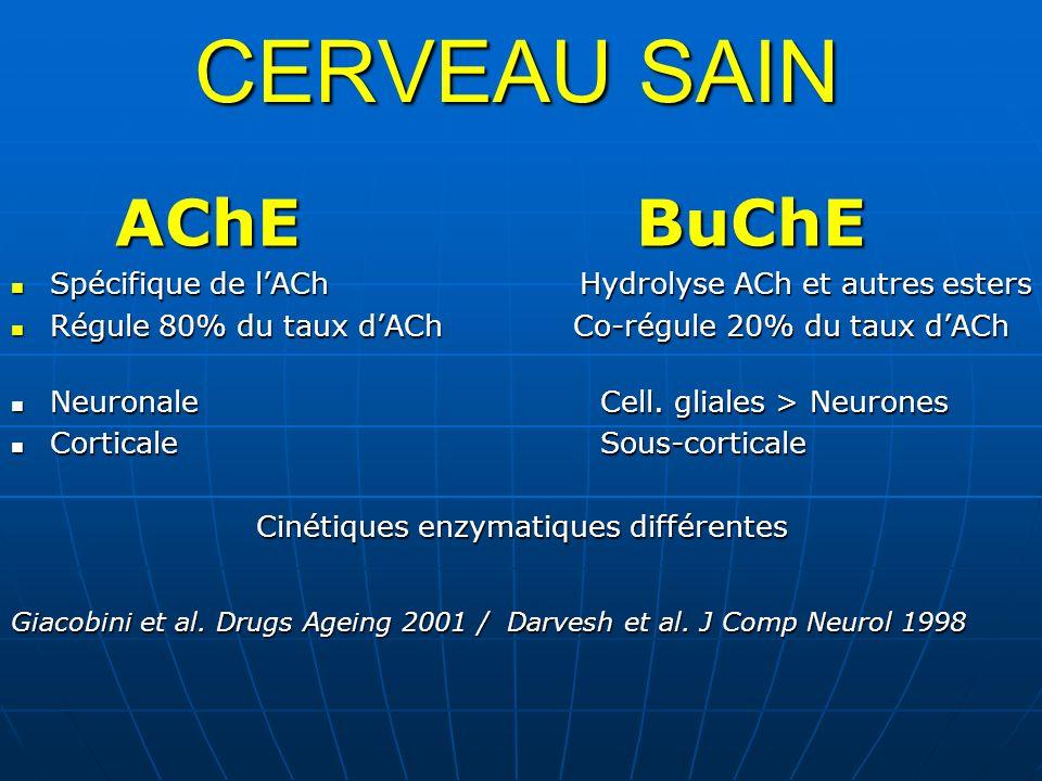 Cinétiques enzymatiques différentes