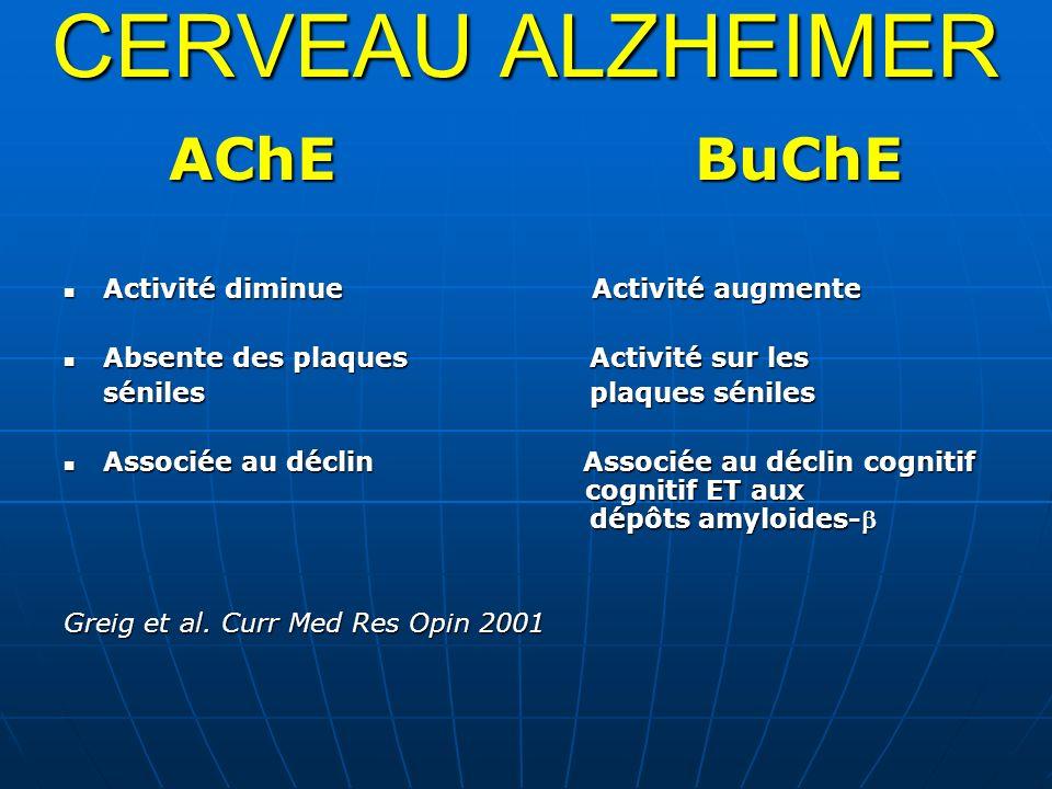 CERVEAU ALZHEIMER AChE BuChE Activité diminue Activité augmente
