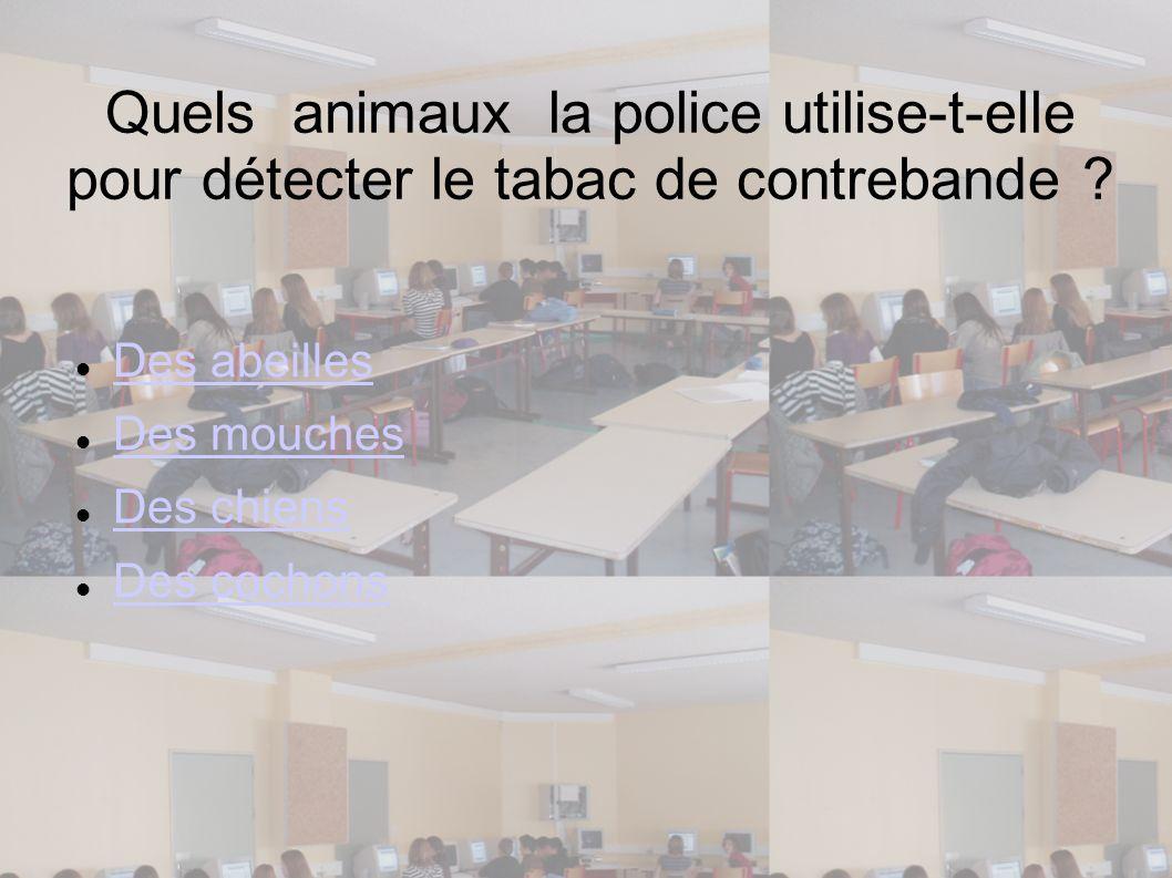 Quels animaux la police utilise-t-elle pour détecter le tabac de contrebande