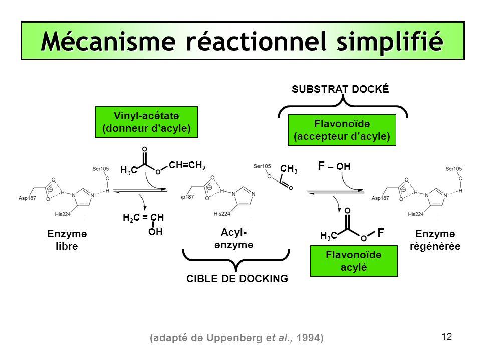 Mécanisme réactionnel simplifié