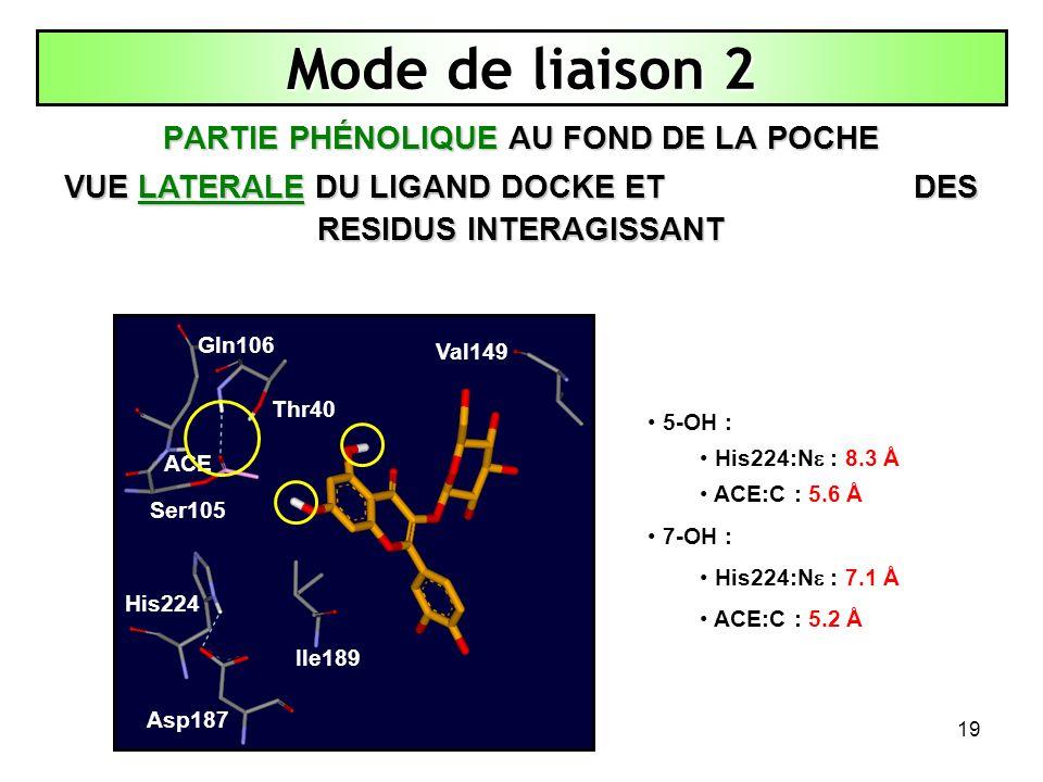 Mode de liaison 2 PARTIE PHÉNOLIQUE AU FOND DE LA POCHE
