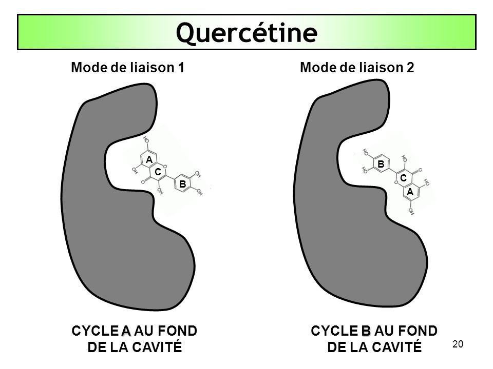 CYCLE A AU FOND DE LA CAVITÉ CYCLE B AU FOND DE LA CAVITÉ