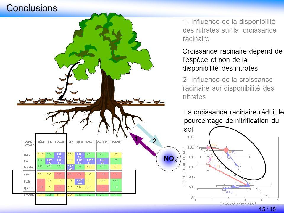 Conclusions 1- Influence de la disponibilité des nitrates sur la croissance racinaire.