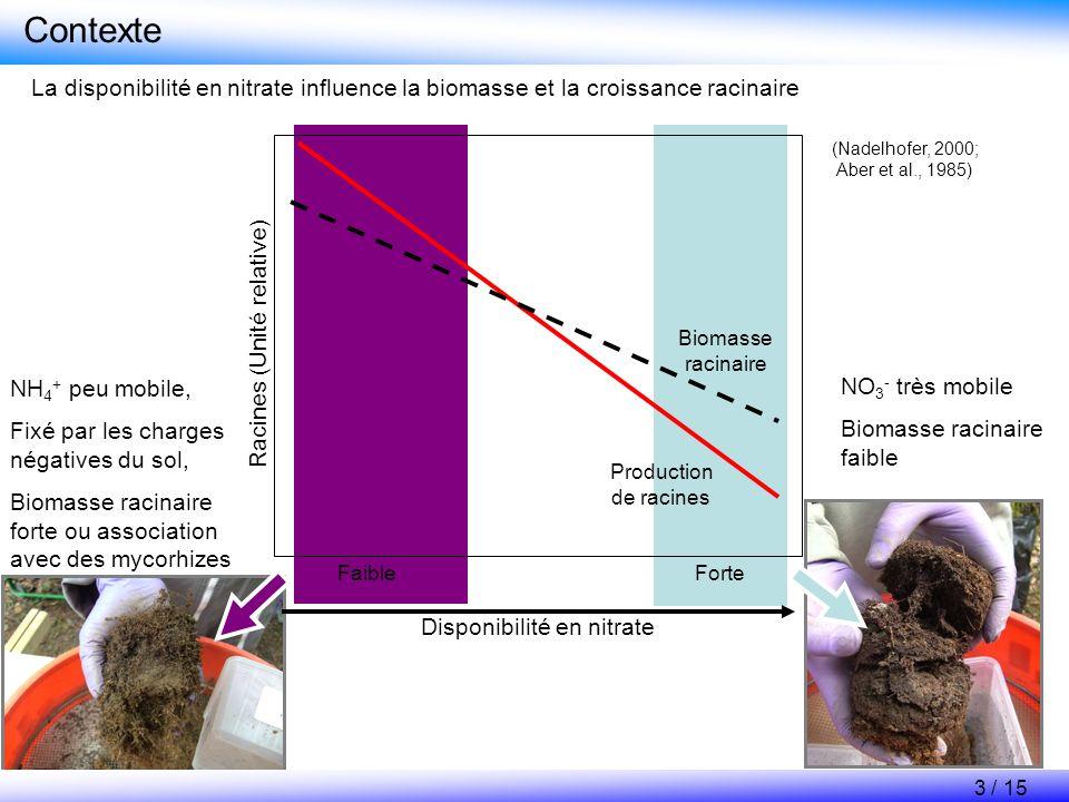 Contexte La disponibilité en nitrate influence la biomasse et la croissance racinaire. NH4+ peu mobile,