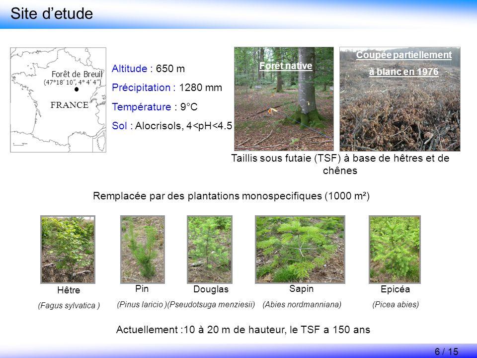 Site d'etude Altitude : 650 m Précipitation : 1280 mm