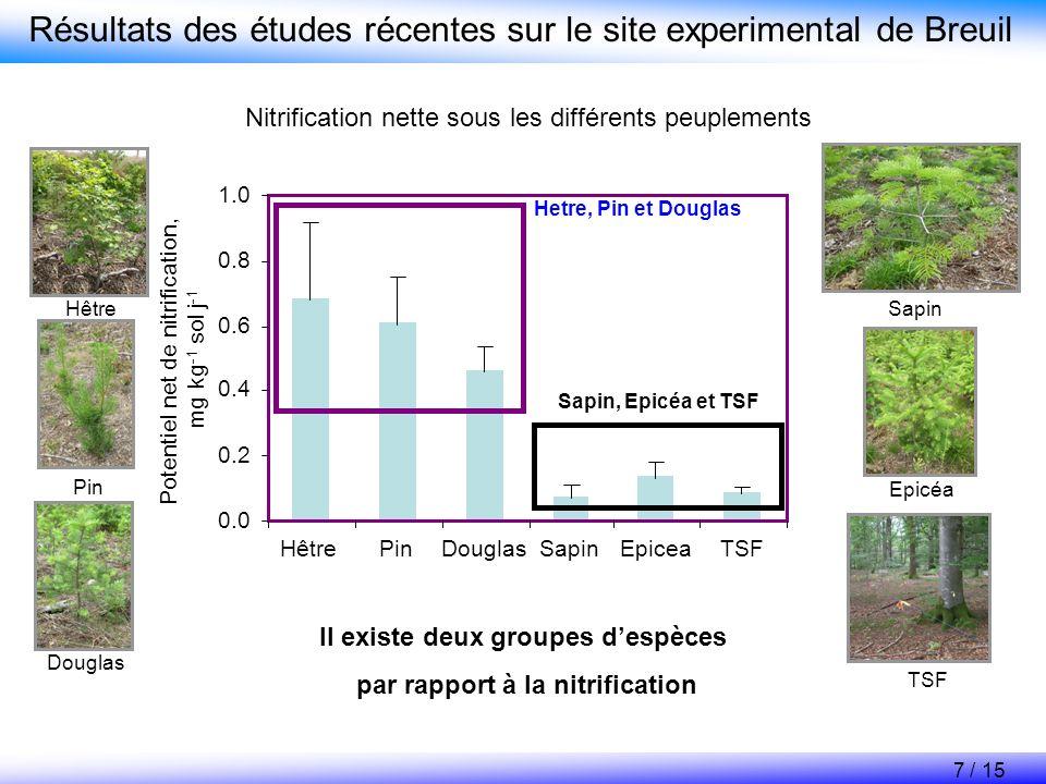 Il existe deux groupes d'espèces par rapport à la nitrification