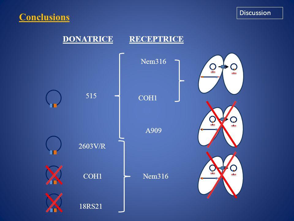 Conclusions DONATRICE RECEPTRICE Discussion 515 Nem316 A909 COH1