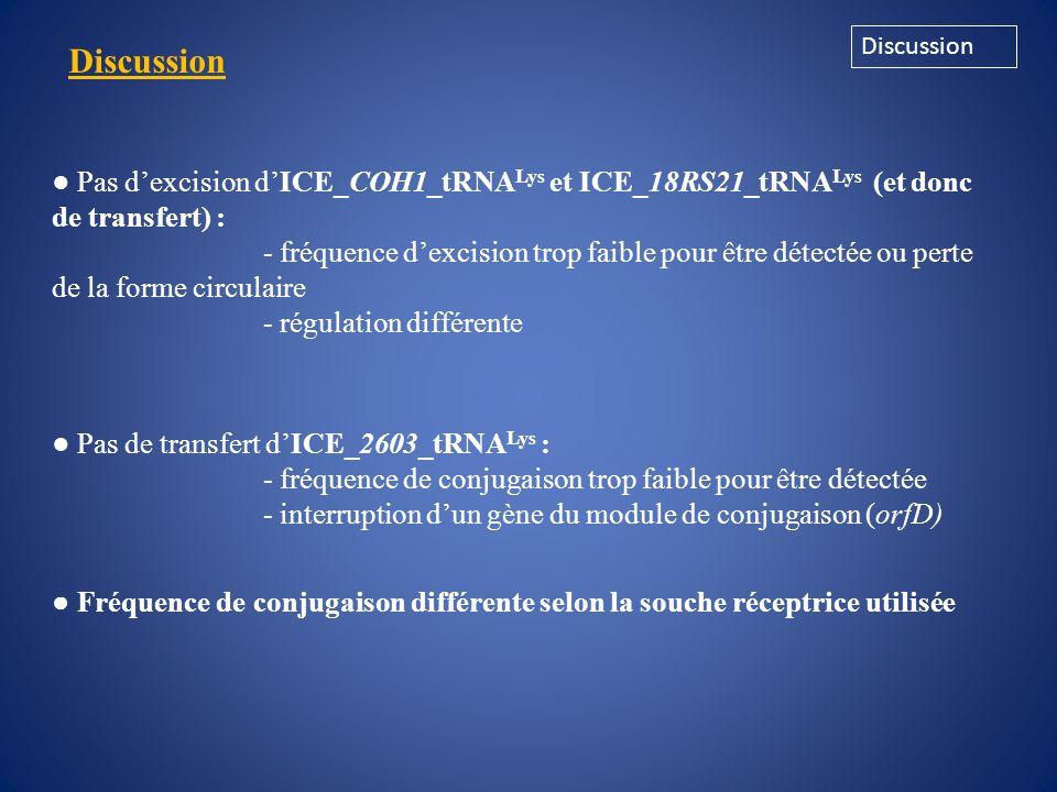 Discussion Discussion. ● Pas d'excision d'ICE_COH1_tRNALys et ICE_18RS21_tRNALys (et donc de transfert) :