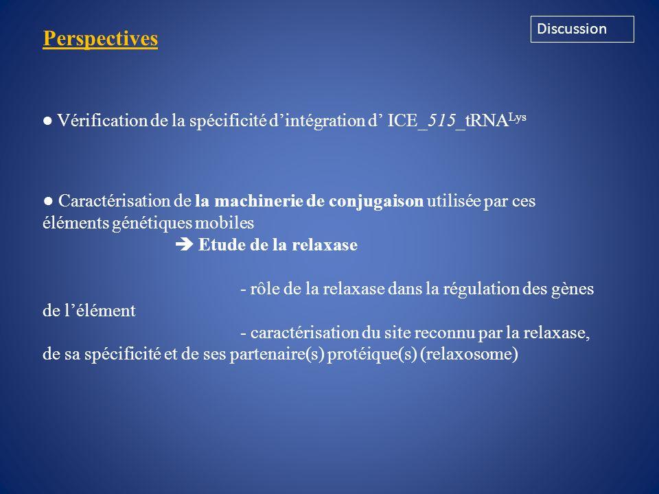 Discussion Perspectives. ● Vérification de la spécificité d'intégration d' ICE_515_tRNALys.