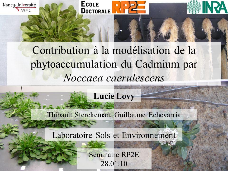 Contribution à la modélisation de la phytoaccumulation du Cadmium par Noccaea caerulescens