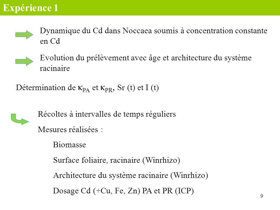 Expérience 1Dynamique du Cd dans Noccaea soumis à concentration constante en Cd.