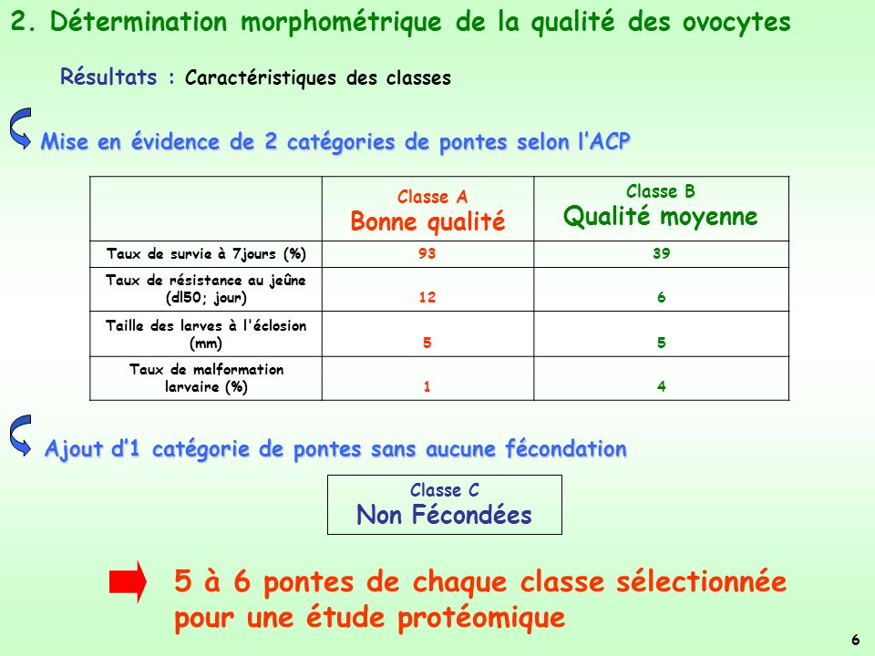 5 à 6 pontes de chaque classe sélectionnée pour une étude protéomique