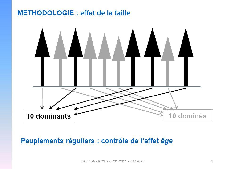 Séminaire RP2E - 20/01/2011 - P. Mérian