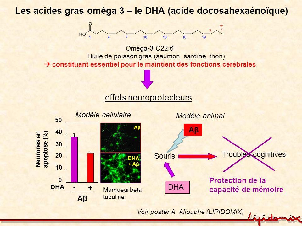 Les acides gras oméga 3 – le DHA (acide docosahexaénoïque)