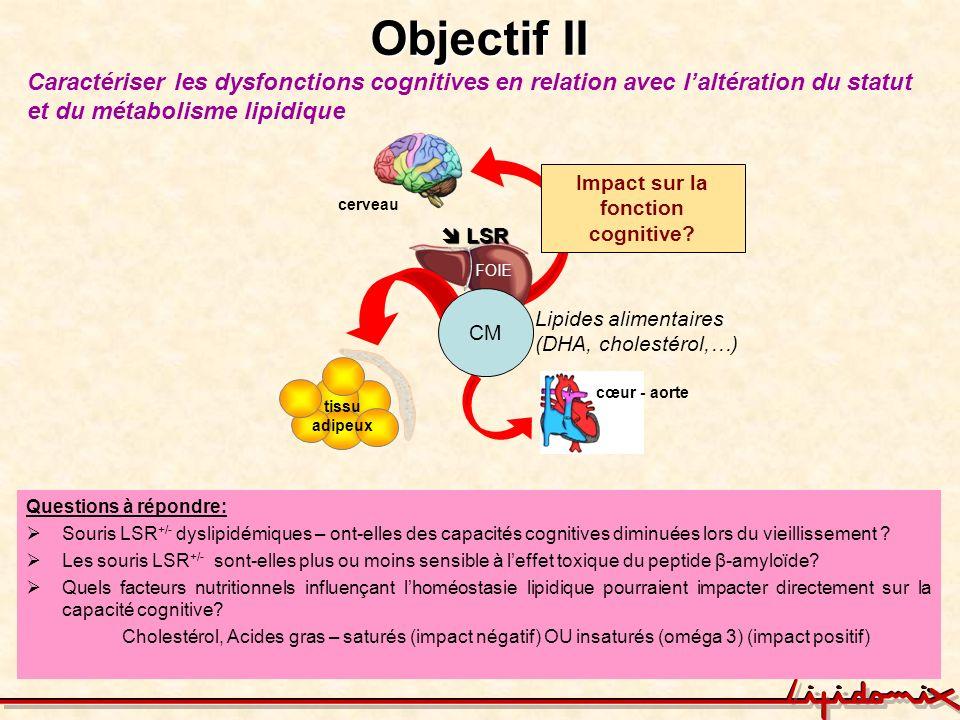 Impact sur la fonction cognitive