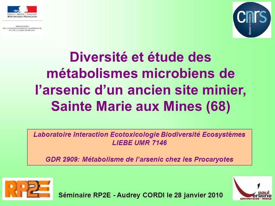 Diversité et étude des métabolismes microbiens de l'arsenic d'un ancien site minier, Sainte Marie aux Mines (68)
