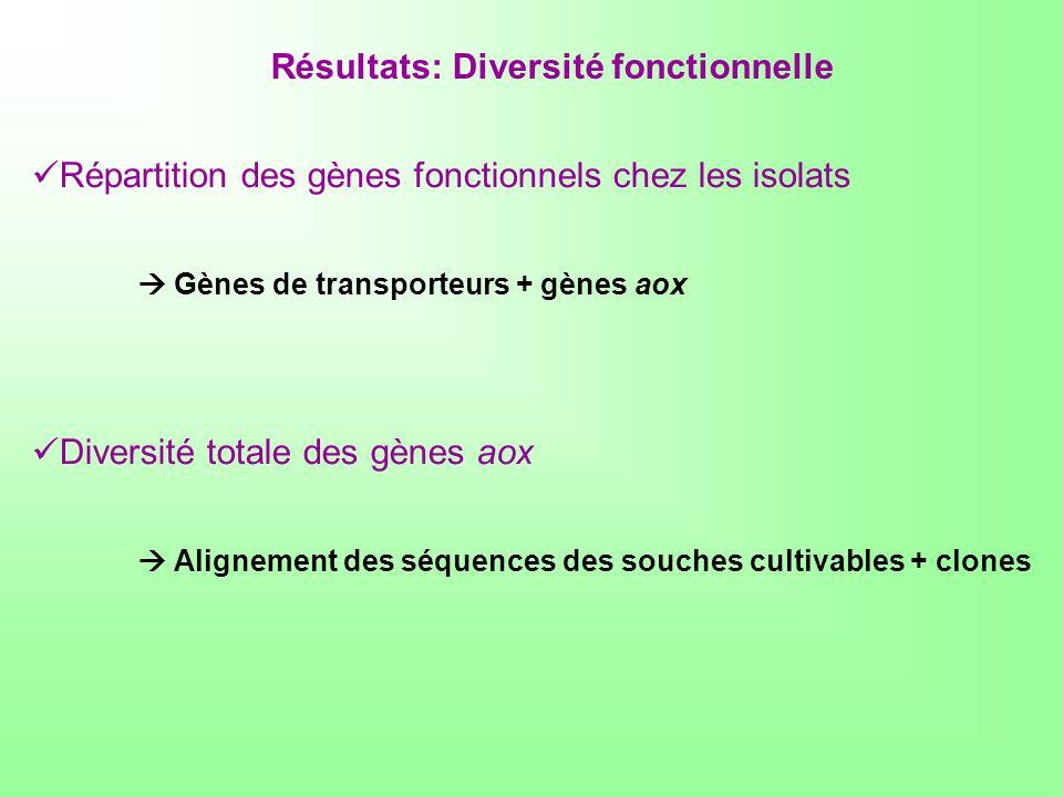 Résultats: Diversité fonctionnelle