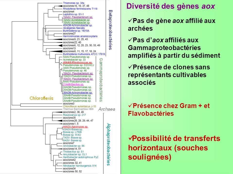 Diversité des gènes aox