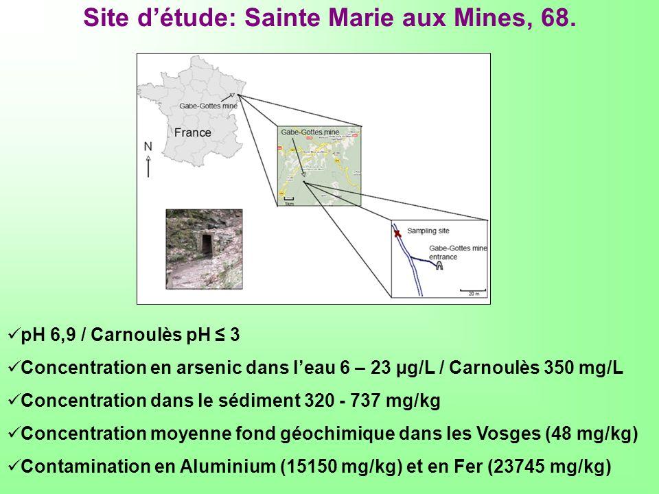 Site d'étude: Sainte Marie aux Mines, 68.