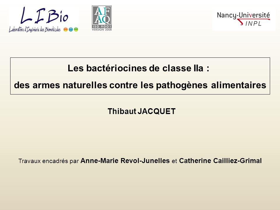 Les bactériocines de classe IIa :