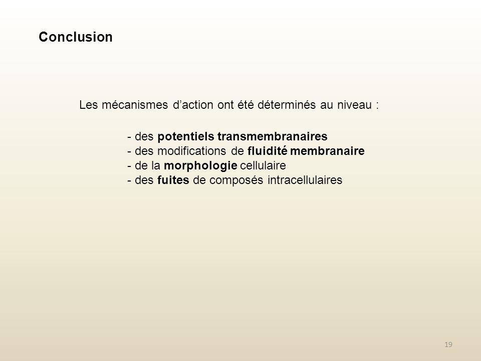 Conclusion Les mécanismes d'action ont été déterminés au niveau :