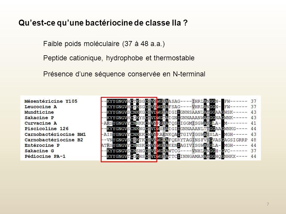 Qu'est-ce qu'une bactériocine de classe IIa