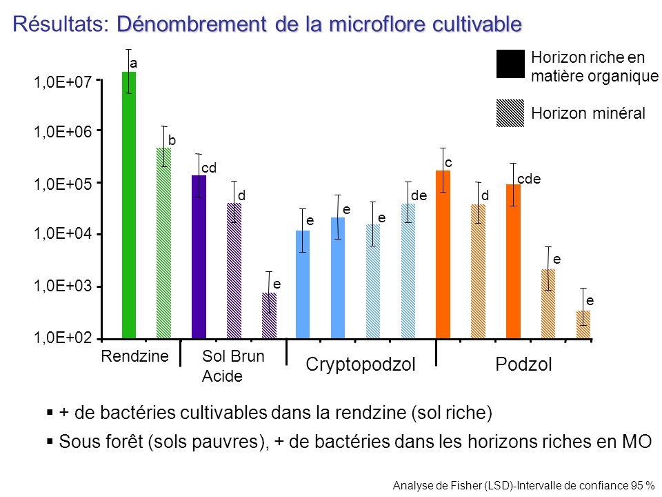 Résultats: Dénombrement de la microflore cultivable