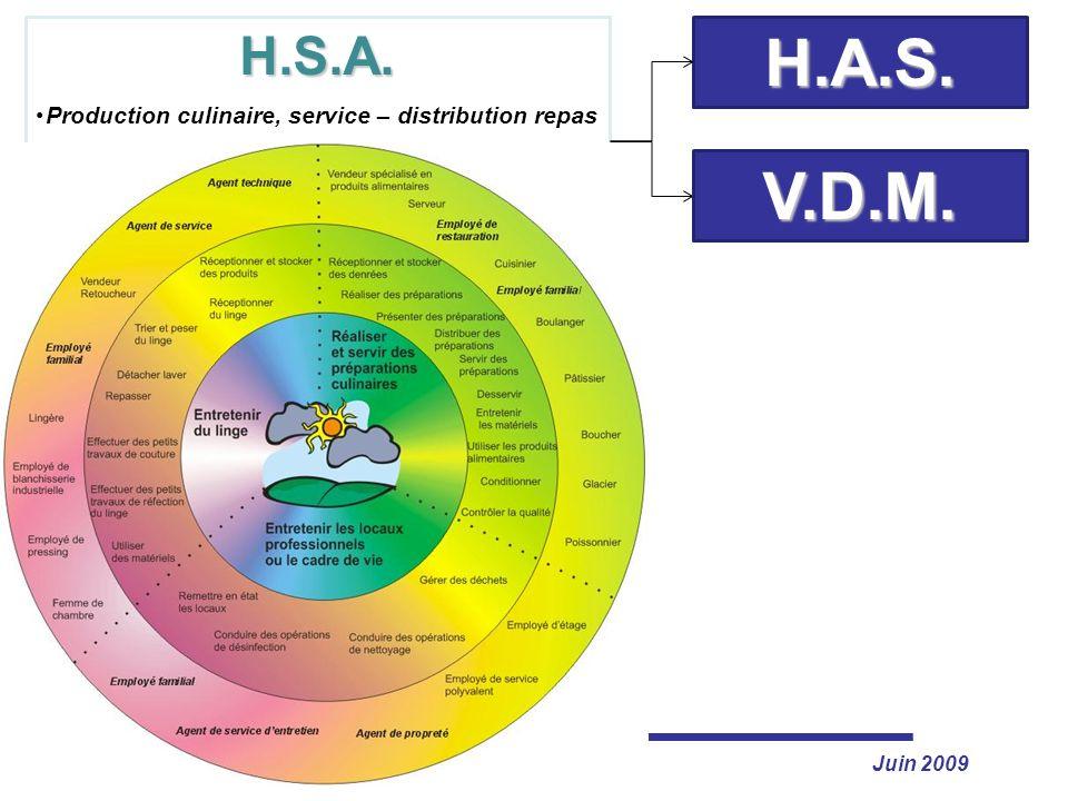 H.S.A. Production culinaire, service – distribution repas. Entretien du linge et des articles textiles.