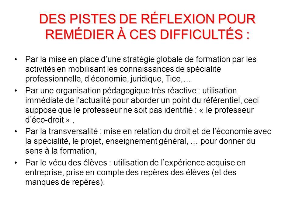 DES PISTES DE RÉFLEXION POUR REMÉDIER À CES DIFFICULTÉS :