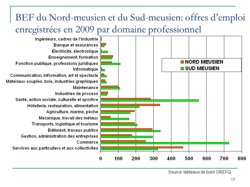 BEF du Nord-meusien et du Sud-meusien: offres d'emploi enregistrées en 2009 par domaine professionnel