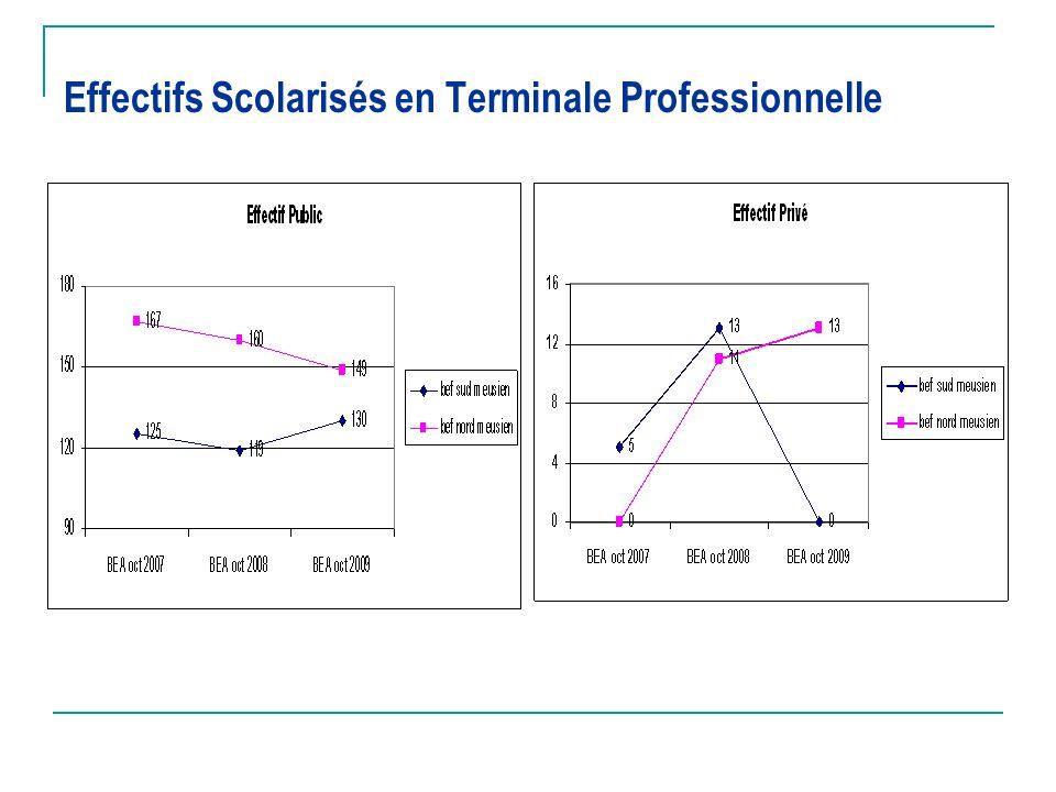 Effectifs Scolarisés en Terminale Professionnelle