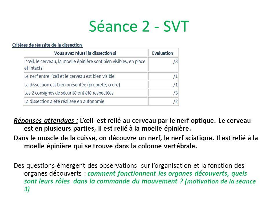 Séance 2 - SVT