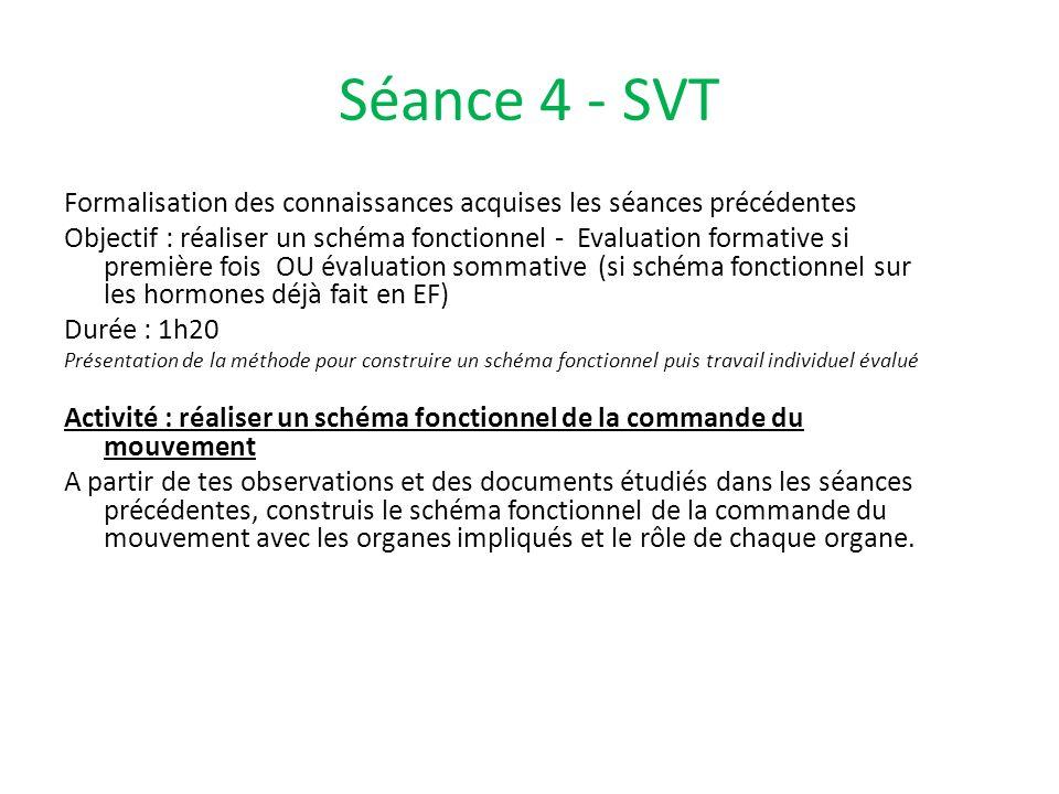 Séance 4 - SVT Formalisation des connaissances acquises les séances précédentes.