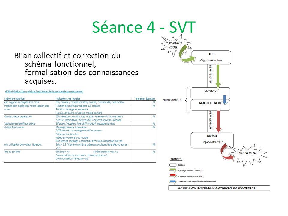 Séance 4 - SVTBilan collectif et correction du schéma fonctionnel, formalisation des connaissances acquises.