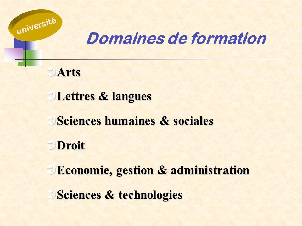 Domaines de formation Arts Lettres & langues