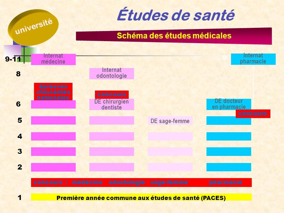Schéma des études médicales