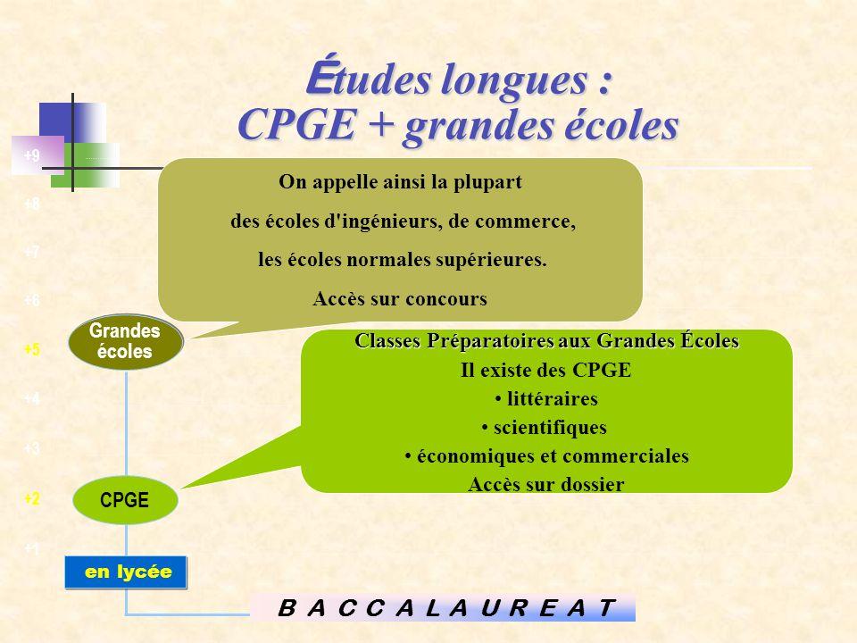 Études longues : CPGE + grandes écoles