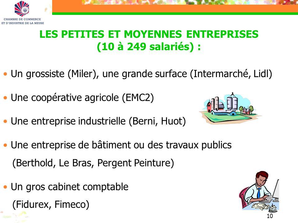 LES PETITES ET MOYENNES ENTREPRISES (10 à 249 salariés) :