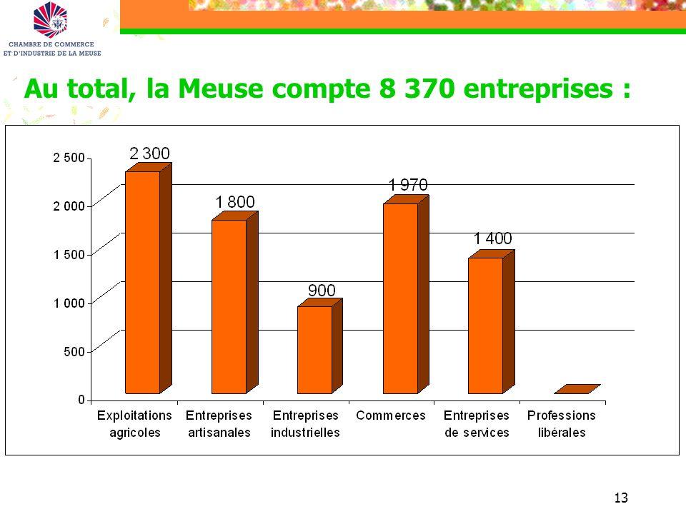 Au total, la Meuse compte 8 370 entreprises :