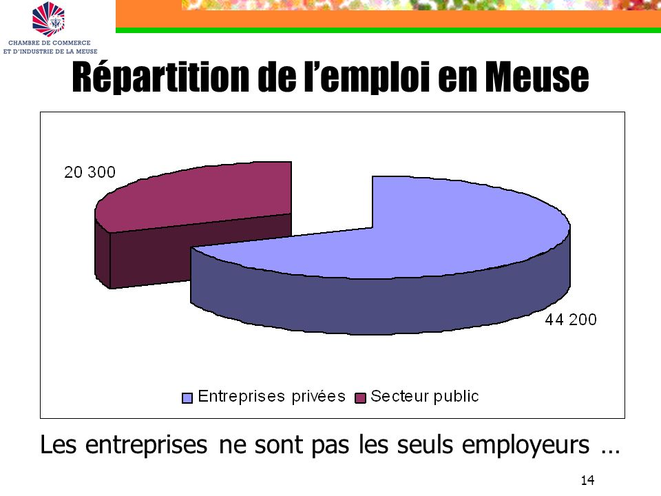 Répartition de l'emploi en Meuse