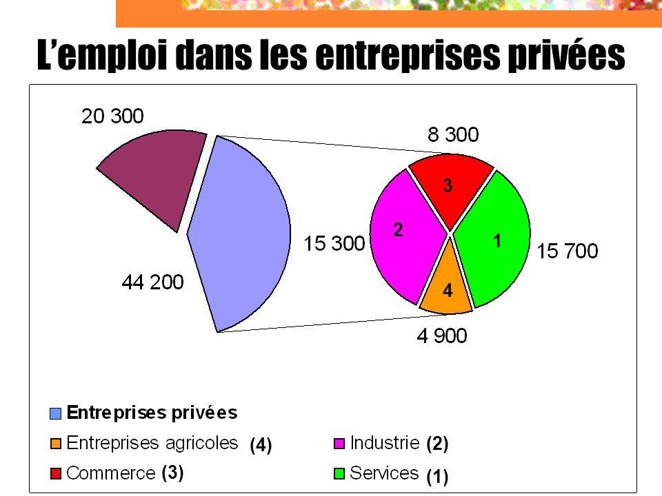 L'emploi dans les entreprises privées
