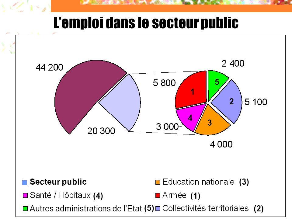 L'emploi dans le secteur public