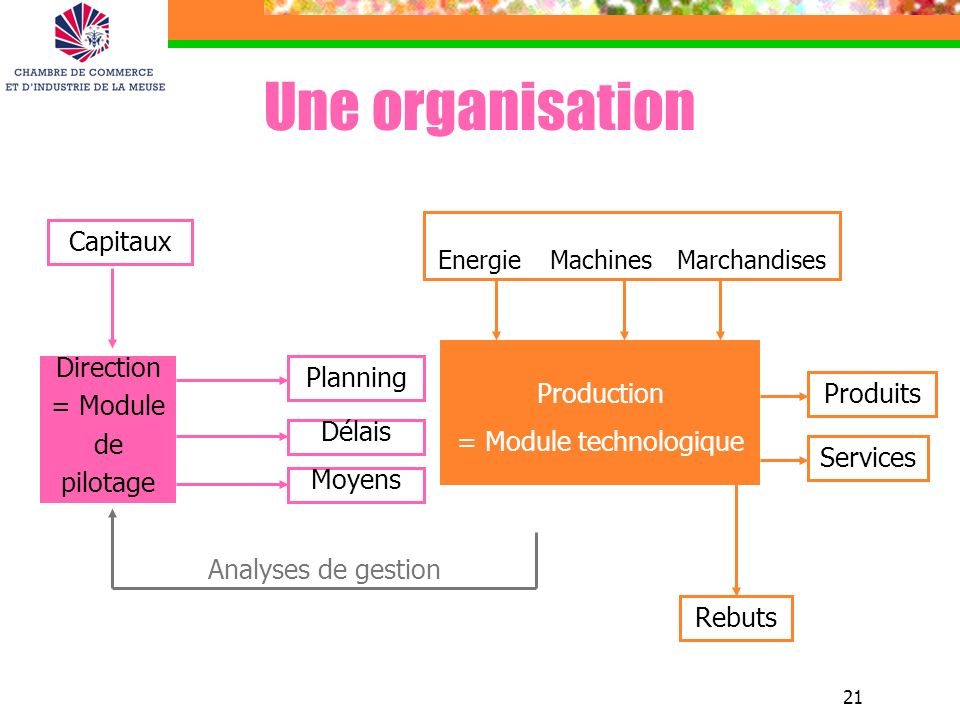 Une organisation Capitaux Production = Module technologique Direction