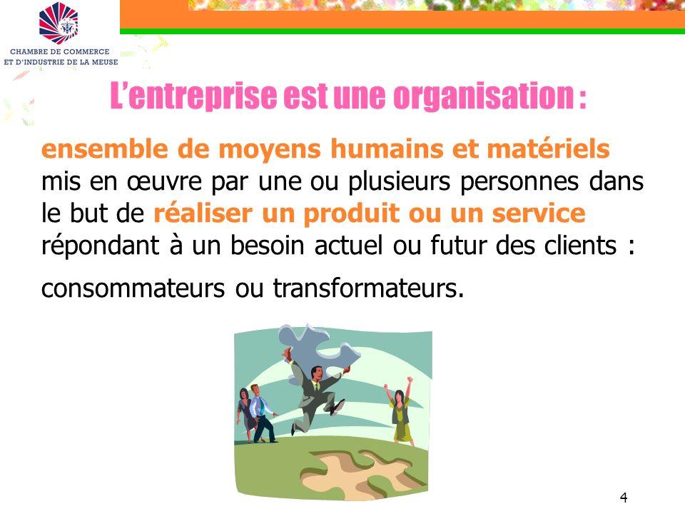 L'entreprise est une organisation :