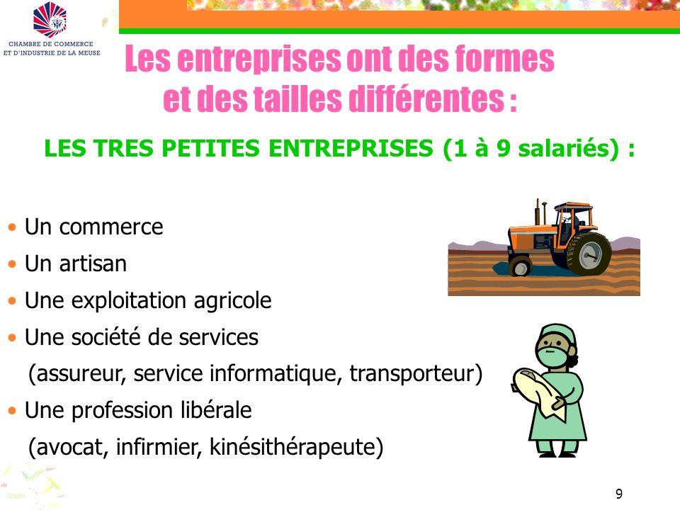 LES TRES PETITES ENTREPRISES (1 à 9 salariés) :