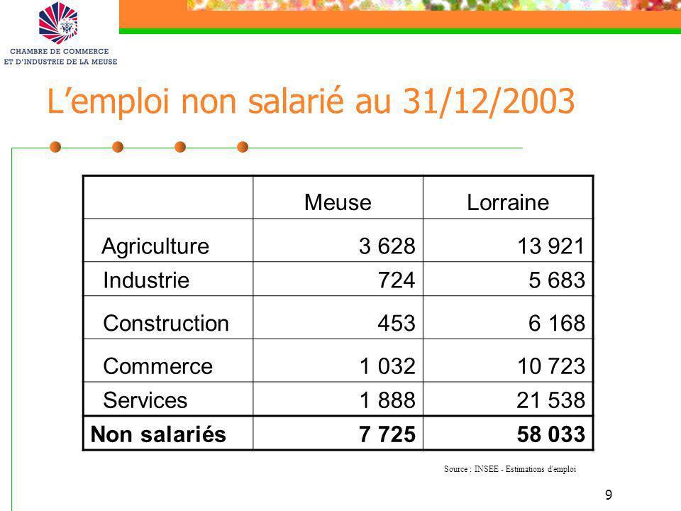 L'emploi non salarié au 31/12/2003