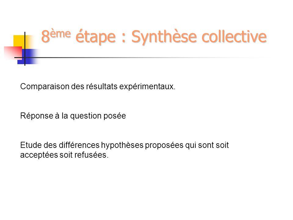 8ème étape : Synthèse collective