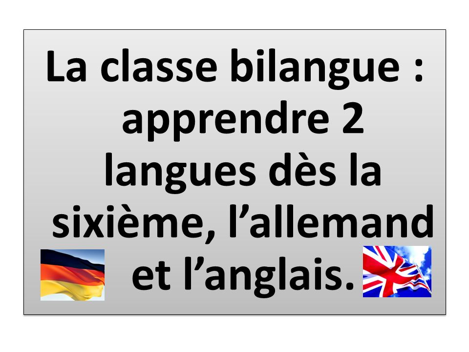 La classe bilangue : apprendre 2 langues dès la sixième, l'allemand et l'anglais.