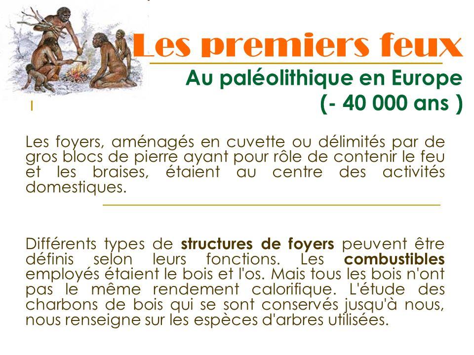 Les premiers feux Au paléolithique en Europe (- 40 000 ans )